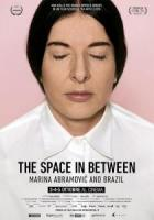 The Space in Between - Marina Abramovic and Brazil a