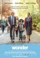 Wonder a